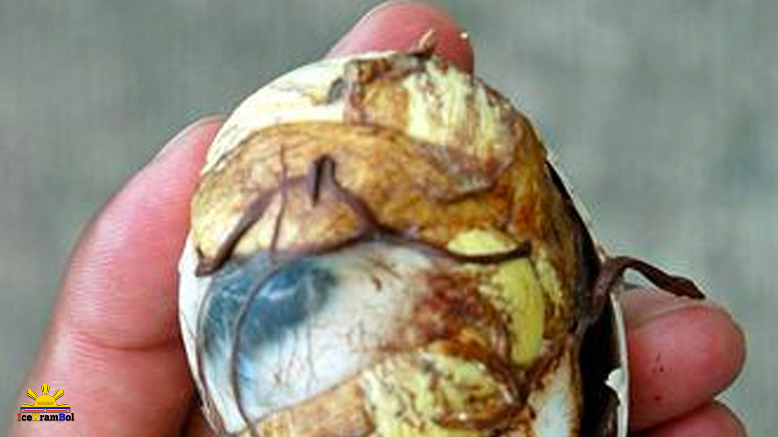 Balut (Broiled Duck Egg)
