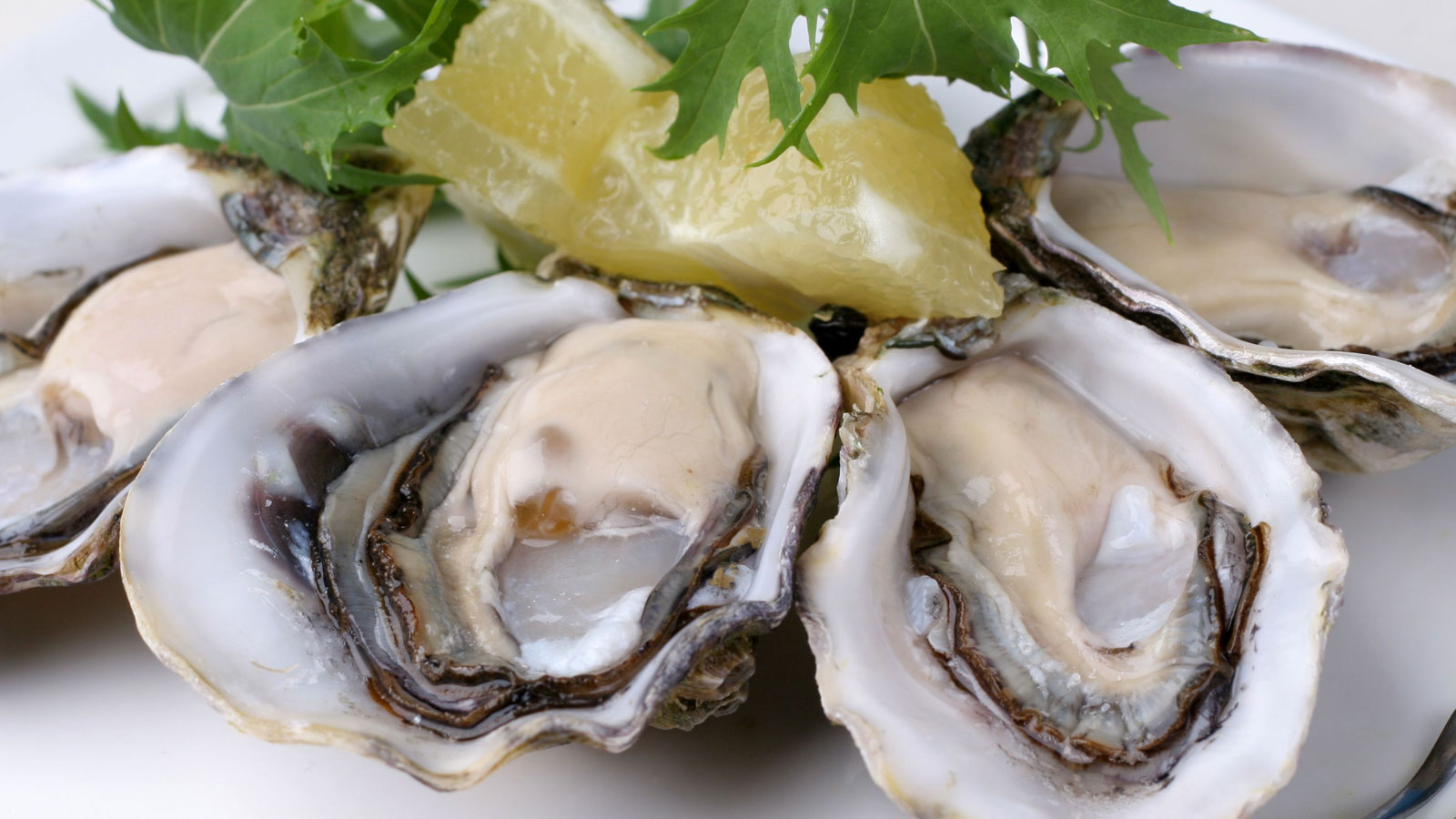 Talaba (Steamed Oysters)