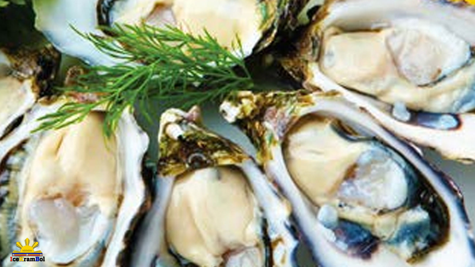 Sisi (Small Oysters)